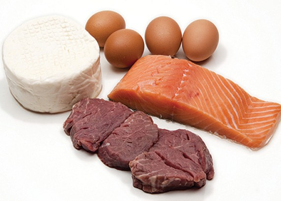 Protein in your Diet